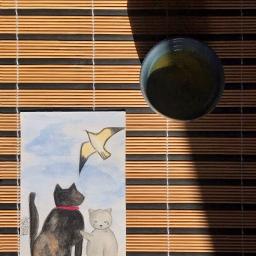 Storia di una tealover e del libro che le insegnò a volare